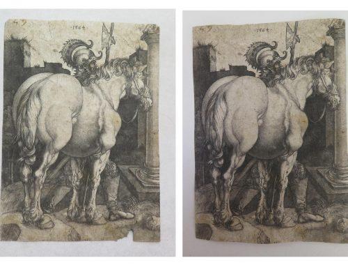 """Restauration gravure de """"Albrecht Dürer"""""""